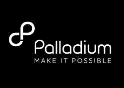Palladium logo image