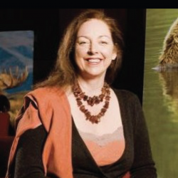 Lisa Samford profile image
